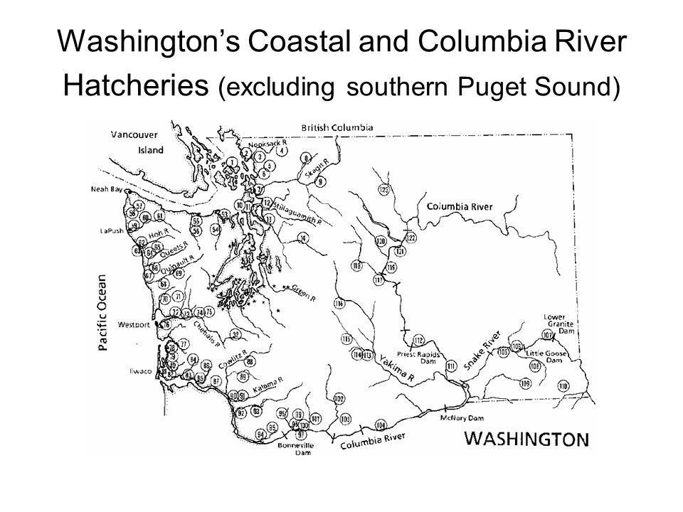 Washington's Coastal and Columbia River Hatcheries (excluding southern Puget Sound)
