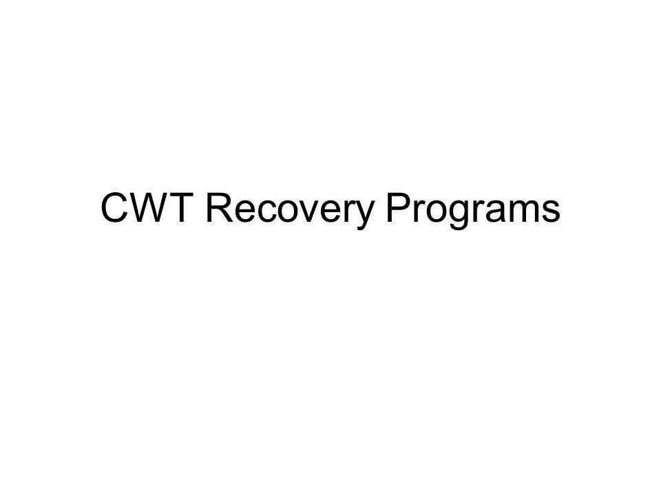 CWT Recovery Programs