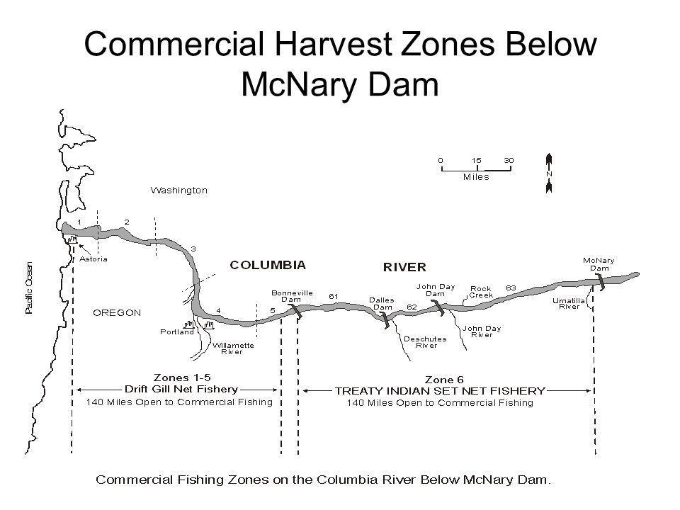Commercial Harvest Zones Below McNary Dam