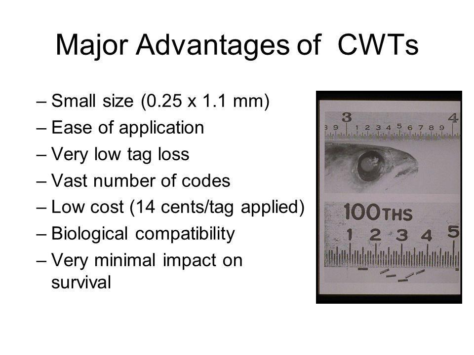 Major Advantages of CWTs
