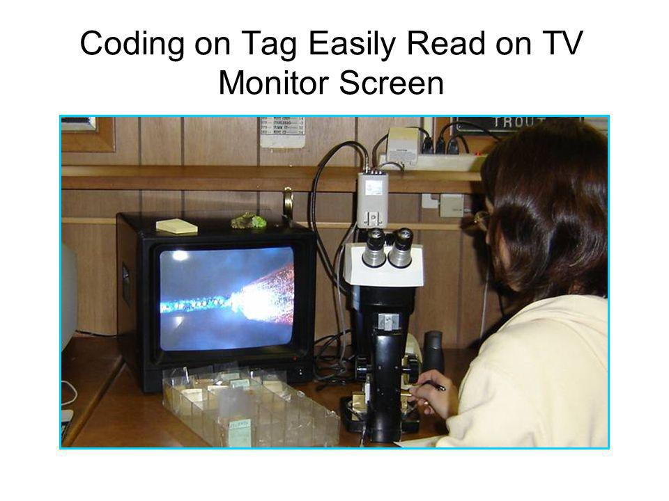 Coding on Tag Easily Read on TV Monitor Screen