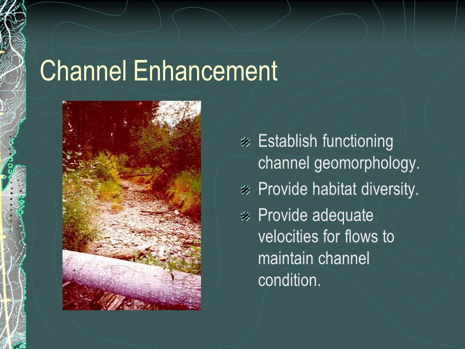 Channel Enhancement Establish functioning channel geomorphology.