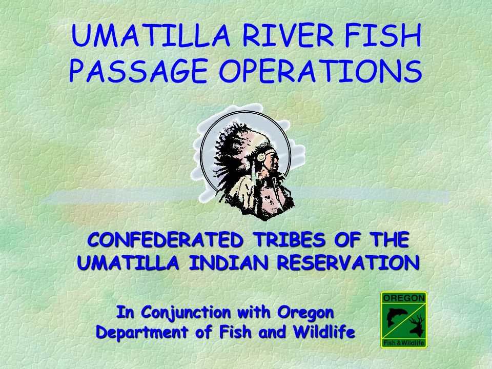UMATILLA RIVER FISH PASSAGE OPERATIONS