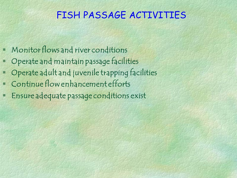 FISH PASSAGE ACTIVITIES