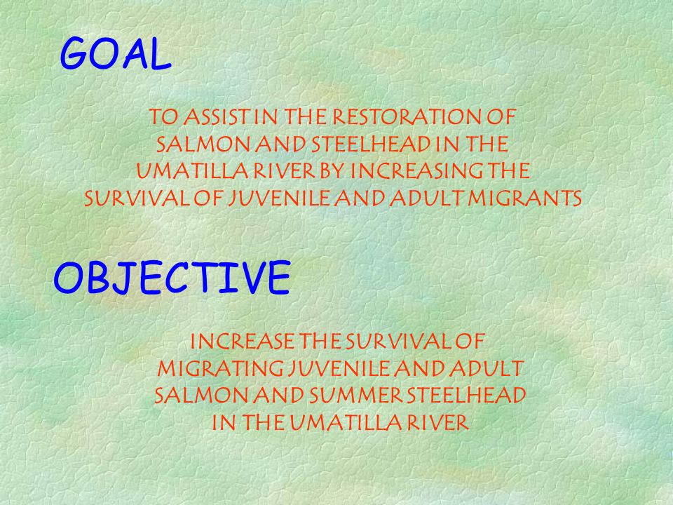 GOAL OBJECTIVE TO ASSIST IN THE RESTORATION OF