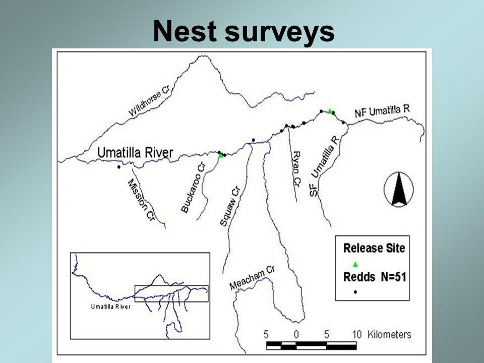 Nest surveys