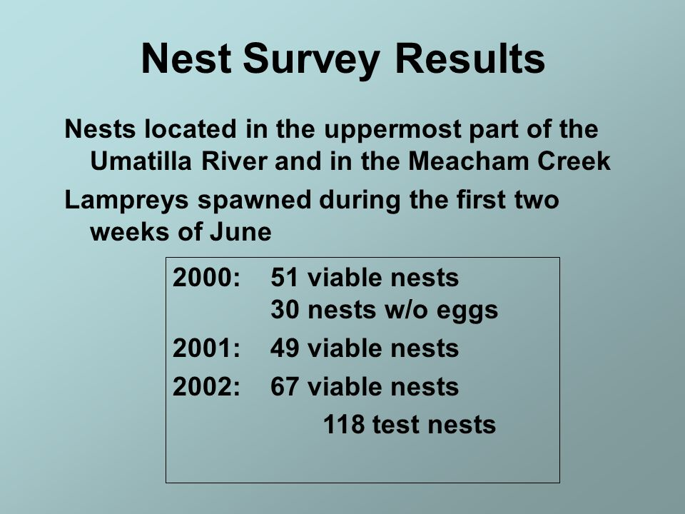 Nest Survey Results Nests located in the uppermost part of the Umatilla River and in the Meacham Creek.