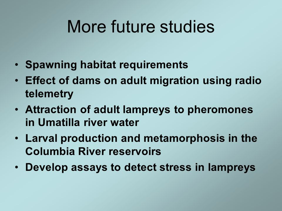 More future studies Spawning habitat requirements