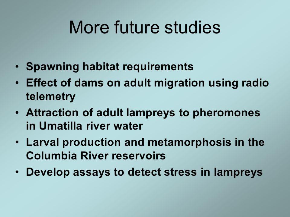 More future studies Spawning habitat requirements