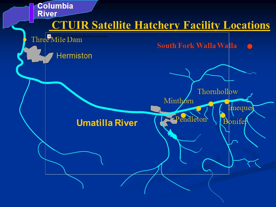 . . . . . . CTUIR Satellite Hatchery Facility Locations Umatilla River