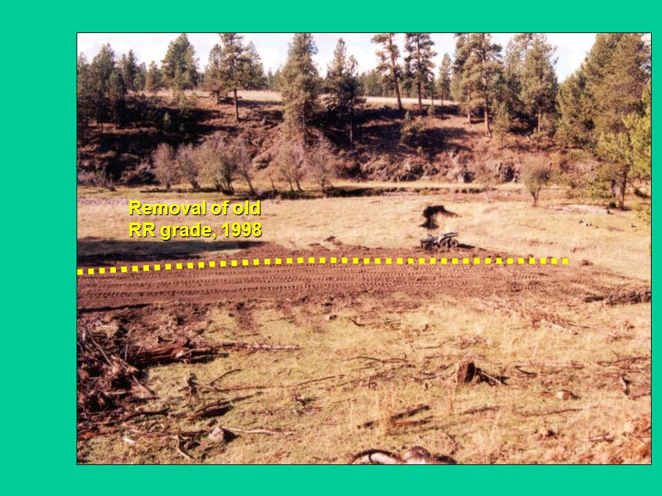 Removal of old RR grade, 1998