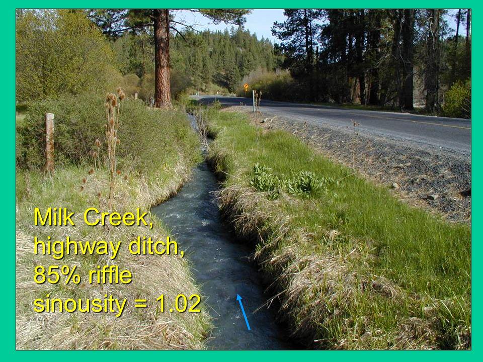 Milk Creek, highway ditch, 85% riffle sinousity = 1.02