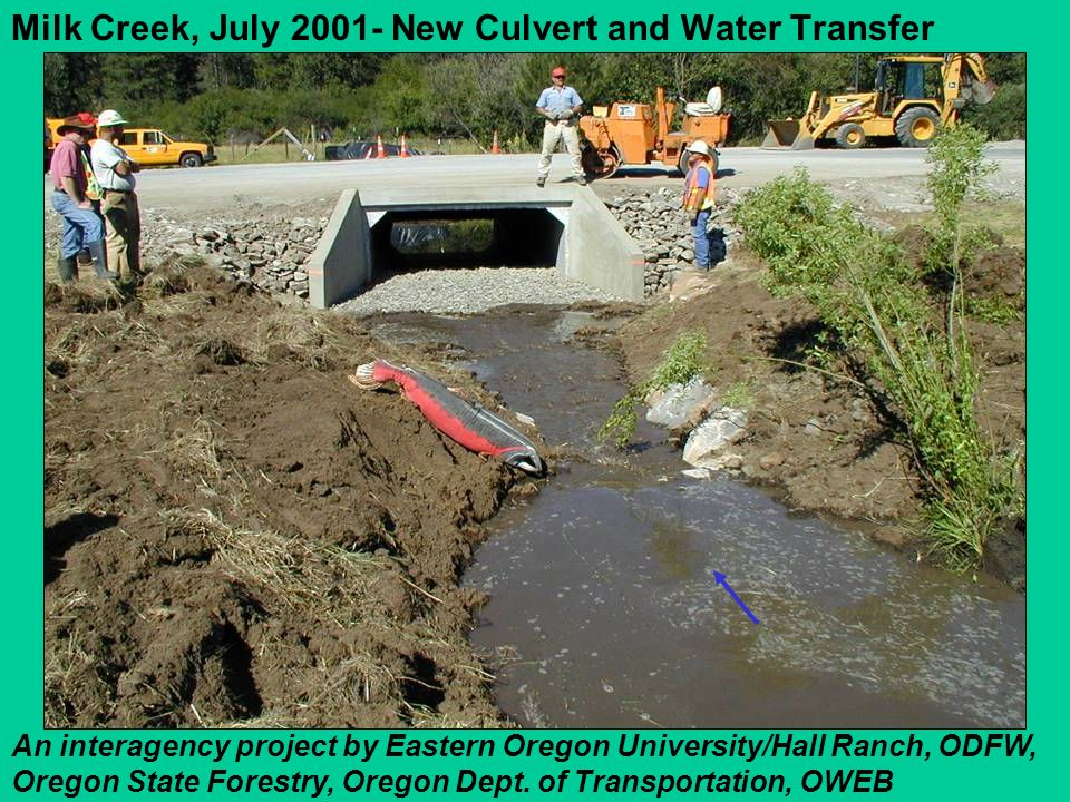 Milk Creek, July 2001- New Culvert and Water Transfer