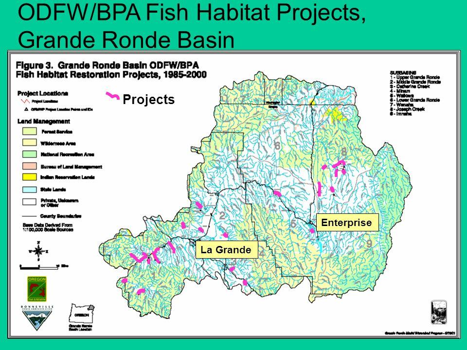 ODFW/BPA Fish Habitat Projects, Grande Ronde Basin