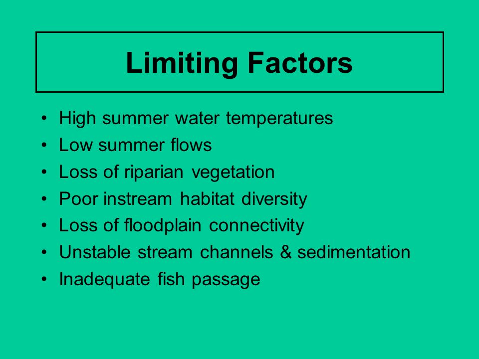 Limiting Factors High summer water temperatures Low summer flows