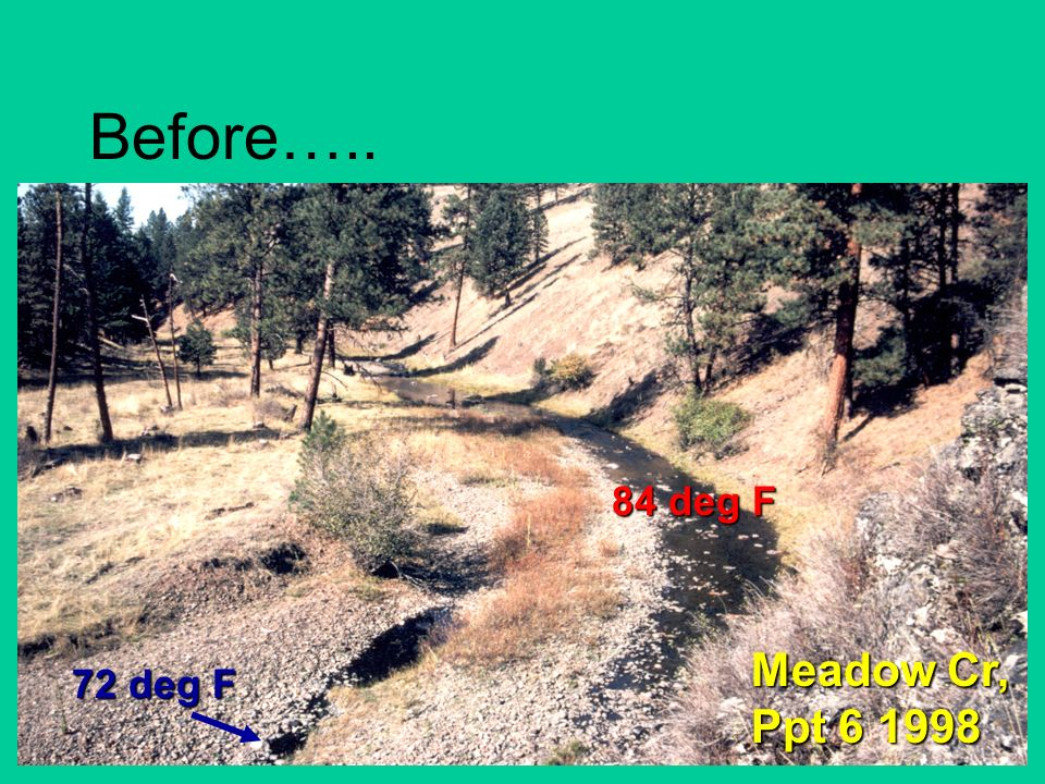 Before….. Meadow Cr, Ppt 6 1998 84 deg F 72 deg F