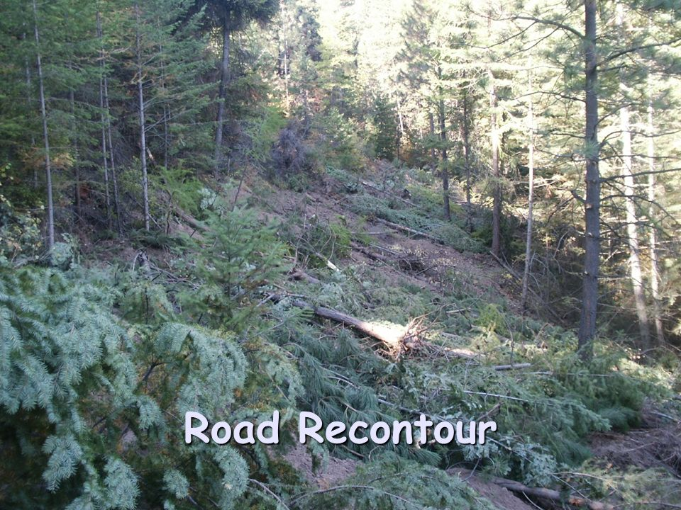 Road Recontour