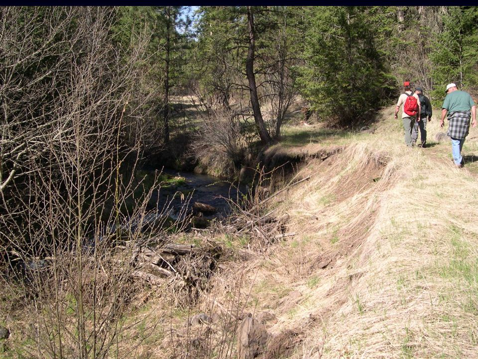 Charley Creek 2004 19 miles of road surveyed – all to be decommissioned. 5 stream banks to be repaired & stabilized.