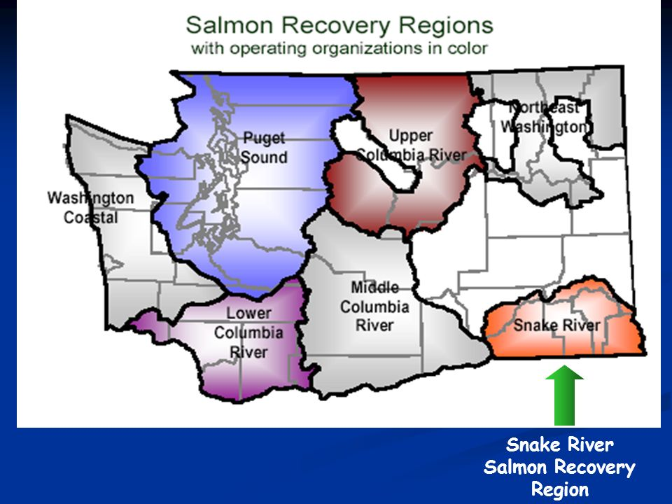 Snake River Salmon Recovery Region
