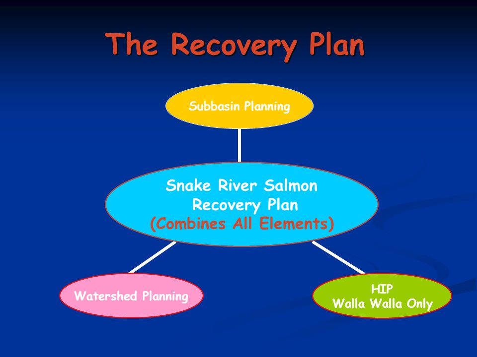 The Recovery Plan