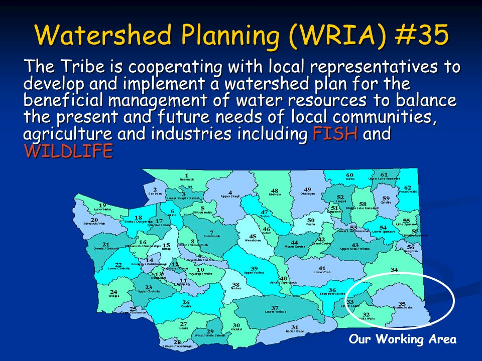 Watershed Planning (WRIA) #35