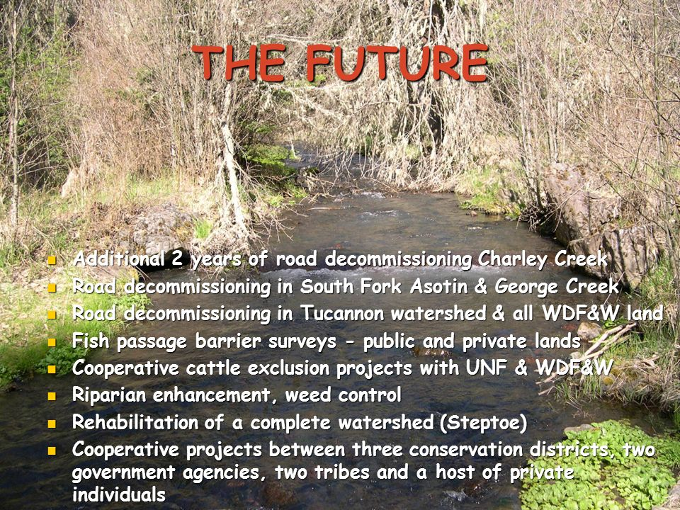 THE FUTURE Additional 2 years of road decommissioning Charley Creek