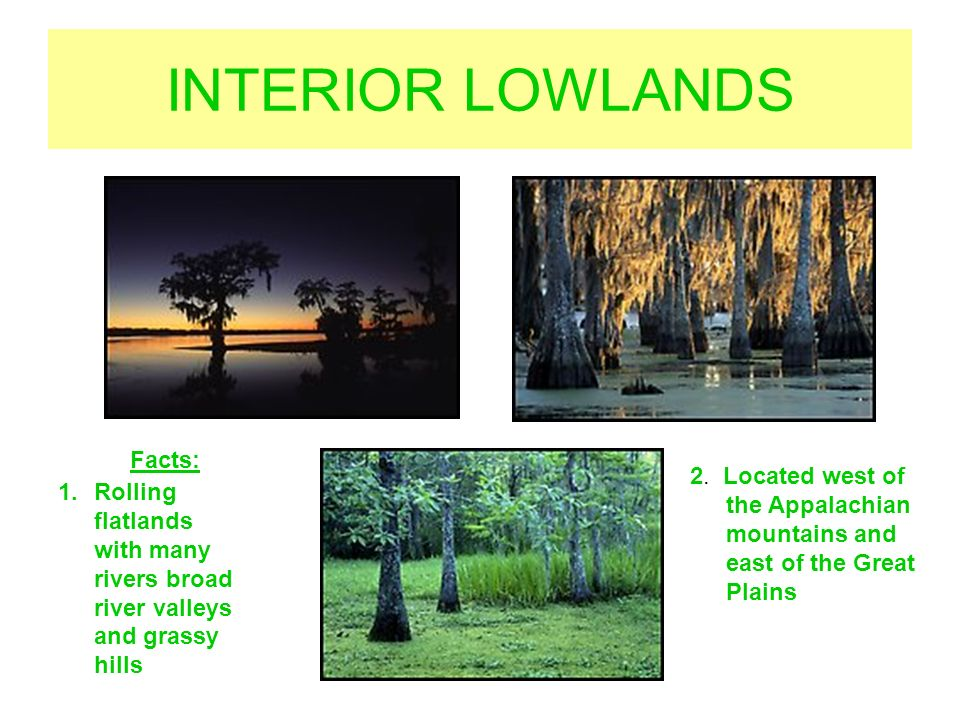 6 INTERIOR LOWLANDS Facts: