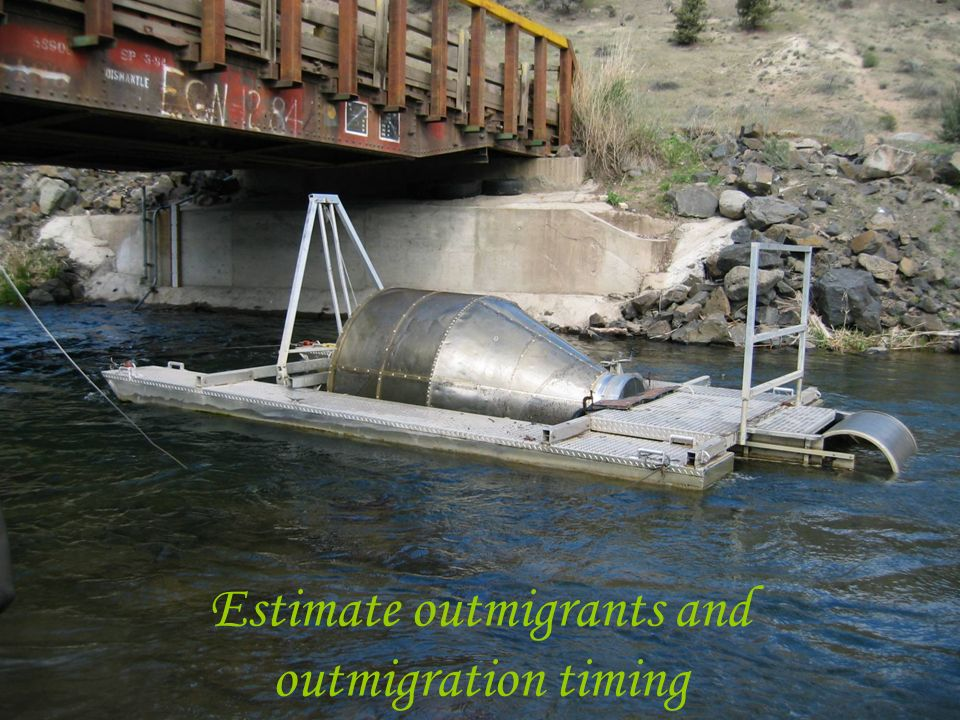 Estimate outmigrants and