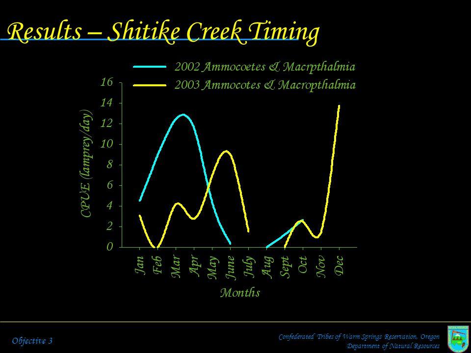 Results – Shitike Creek Timing