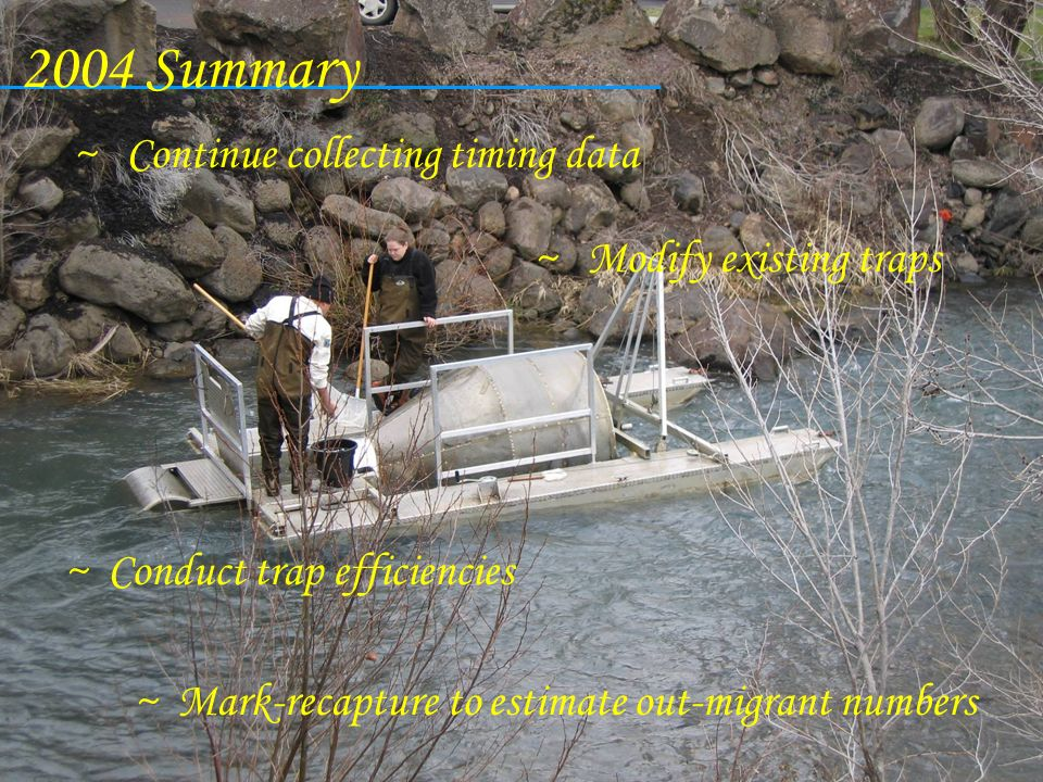 2004 Summary Continue collecting timing data Modify existing traps