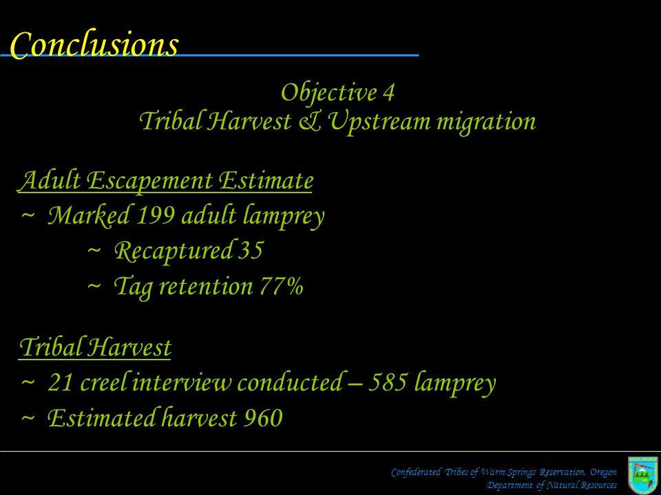 Tribal Harvest & Upstream migration