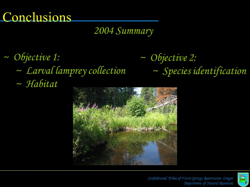Conclusions 2004 Summary Objective 1: Larval lamprey collection
