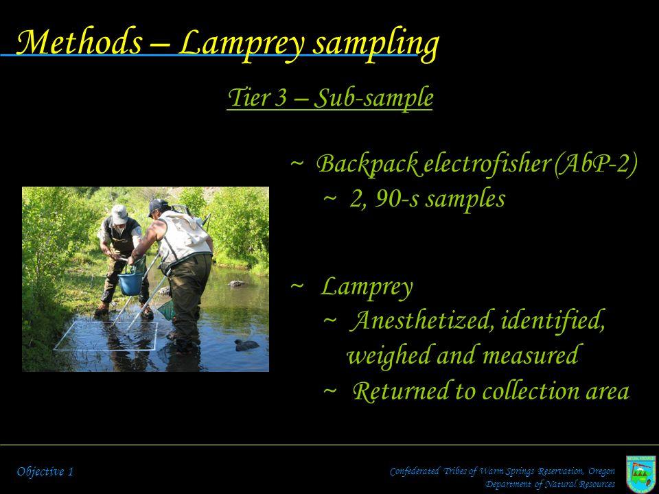 Methods – Lamprey sampling