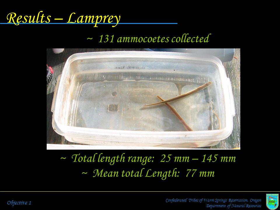 Total length range: 25 mm – 145 mm
