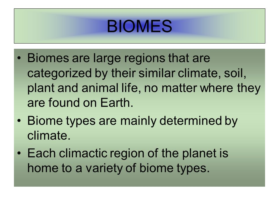 BIOMES Biomes are large regions that are categorized by their similar climate, soil, plant and animal life, no matter where they are found on Earth.