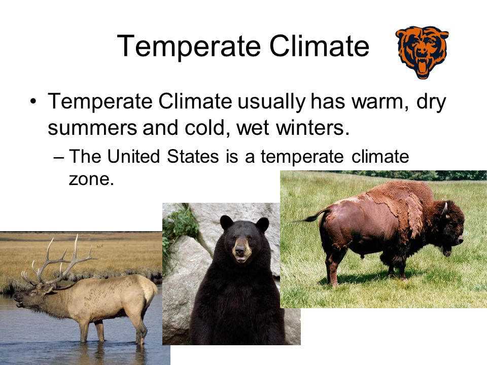 Temperate Climate Temperate Climate usually has warm, dry summers and cold, wet winters.