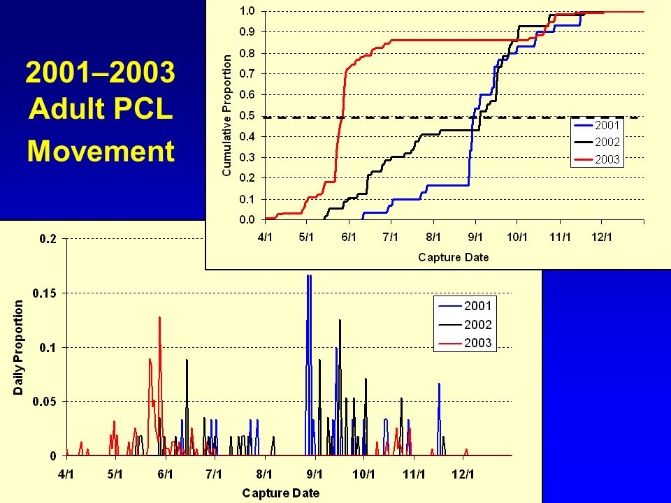 2001–2003 Adult PCL Movement