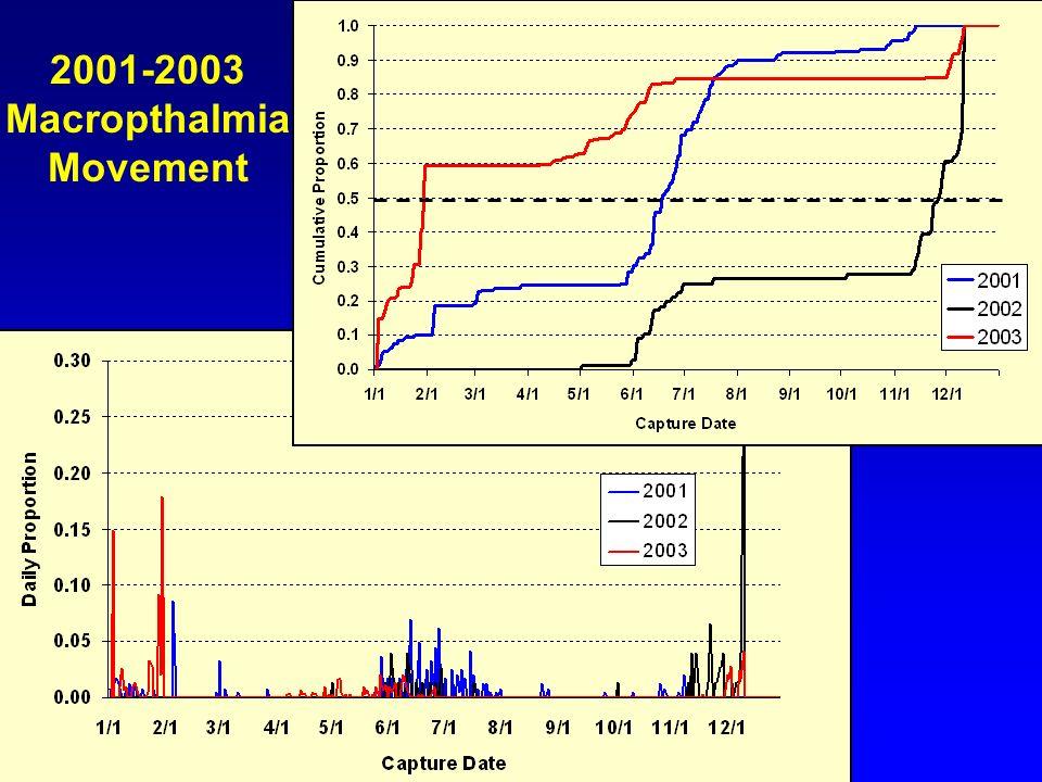2001-2003 Macropthalmia Movement