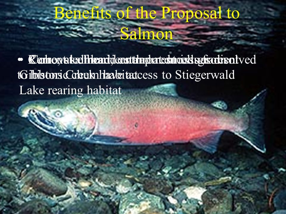 Benefits of the Proposal to Salmon