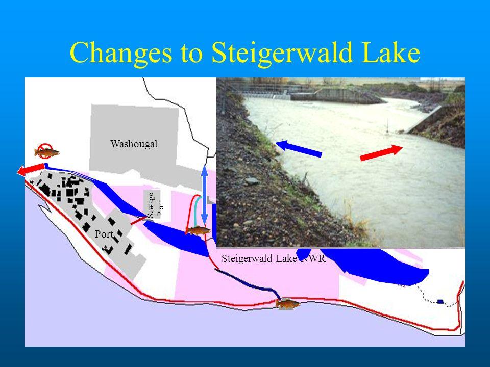 Changes to Steigerwald Lake