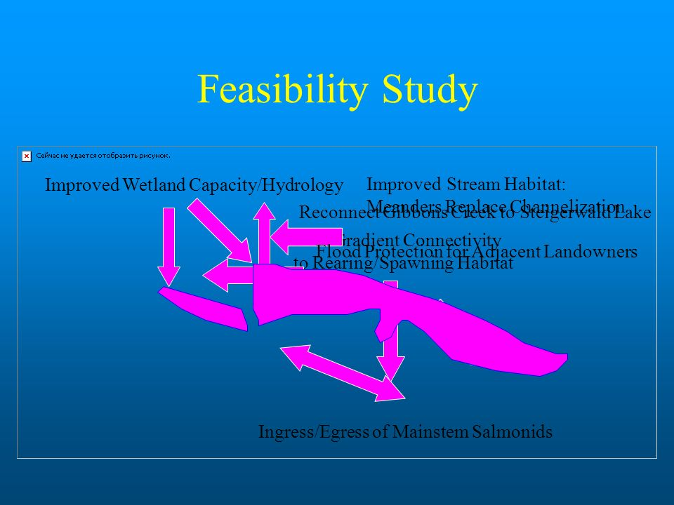 Feasibility Study Improved Wetland Capacity/Hydrology