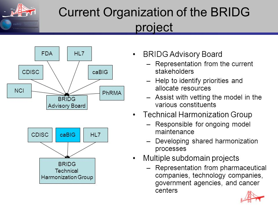 Current Organization of the BRIDG project