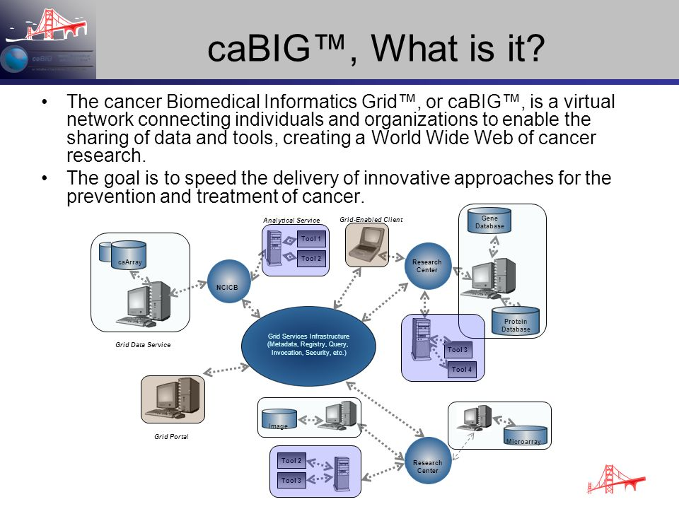 caBIG™, What is it