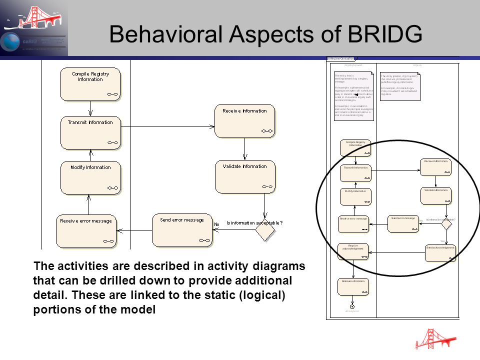Behavioral Aspects of BRIDG