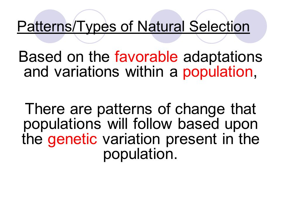Natural Selection That Increases The Frequency Of A Favorable Allele