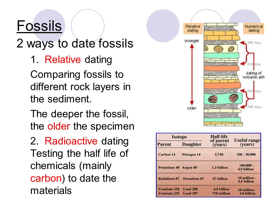two methods of fossil dating Archaeological dating: stratigraphy and seriation  two broad categories of dating or chronometric techniques  absolute dating, methods that produce specific.