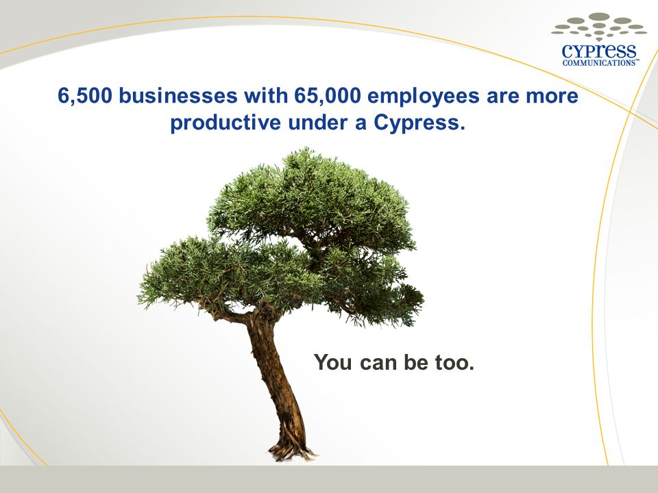 6,500 businesses with 65,000 employees are more productive under a Cypress.