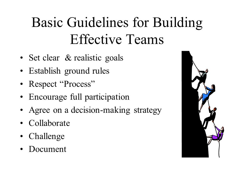 Basic Guidelines for Building Effective Teams