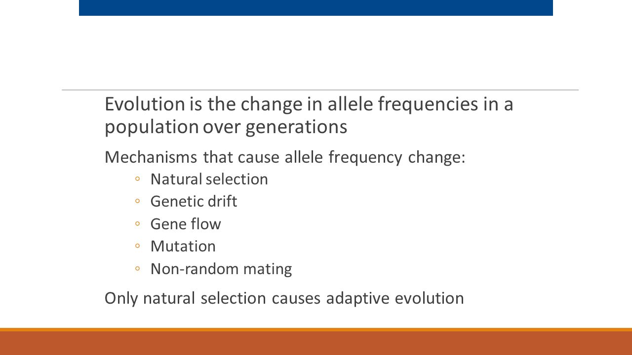 Evolution is the change in allele frequencies in a population over generations
