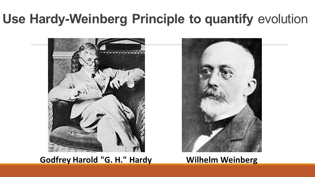 Use Hardy-Weinberg Principle to quantify evolution